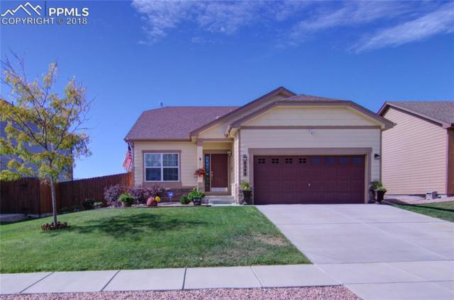 8248 Chasewood Loop, Colorado Springs, CO 80908 (#5078857) :: 8z Real Estate