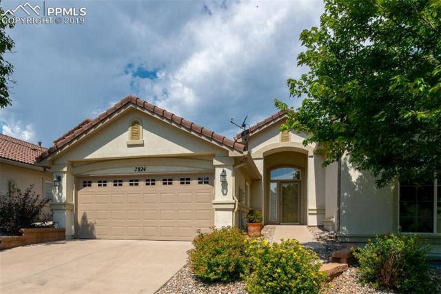 7824 Flicker Grove, Colorado Springs, CO 80920 (#5080974) :: Action Team Realty