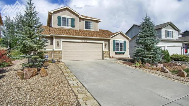 354 Oxbow Drive, Monument, CO 80132 (#5085126) :: 8z Real Estate