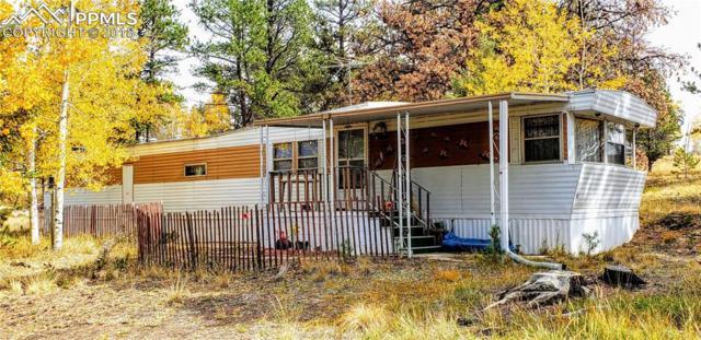 468 Crystal Peak Drive, Lake George, CO 80816 (#5089039) :: Fisk Team, RE/MAX Properties, Inc.