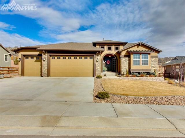 3256 Waterfront Drive, Monument, CO 80132 (#5091388) :: Action Team Realty