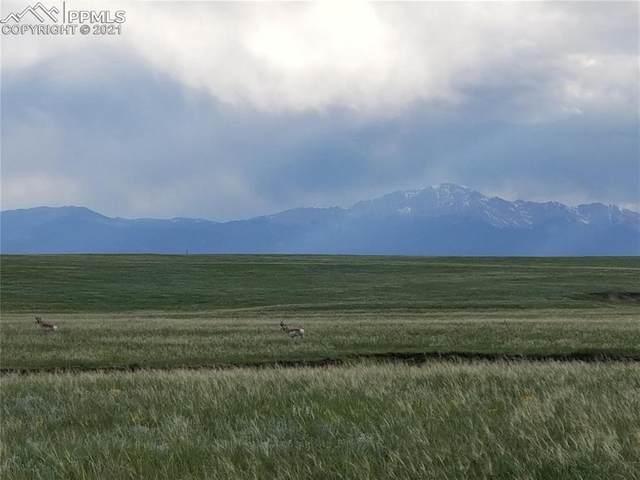 8154 Buckskin Ranch View, Peyton, CO 80831 (#5092259) :: The Daniels Team