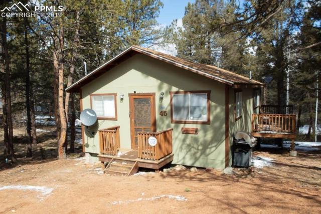 45 Buckskin Circle, Florissant, CO 80816 (#5092616) :: Tommy Daly Home Team