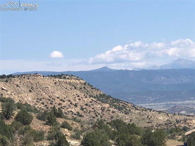 125 Shannon Court, Rockvale, CO 81244 (#5095469) :: Tommy Daly Home Team