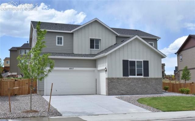 4057 Spanish Oaks Court, Castle Rock, CO 80108 (#5097419) :: The Hunstiger Team
