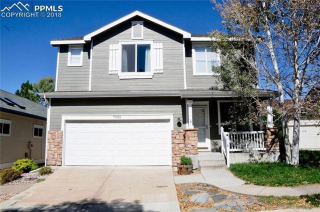 7020 Streamwood Point, Colorado Springs, CO 80922 (#5102727) :: 8z Real Estate