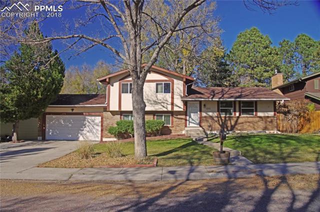 4234 N Hammock Drive, Colorado Springs, CO 80917 (#5108583) :: Fisk Team, RE/MAX Properties, Inc.