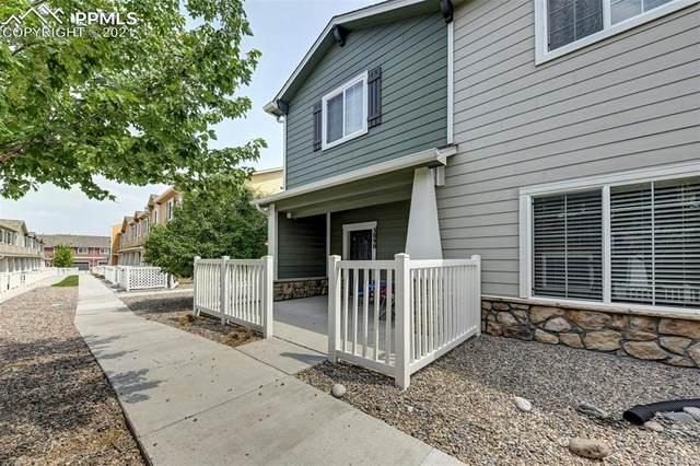 3090 Shikra View, Colorado Springs, CO 80916 (#5113352) :: Tommy Daly Home Team