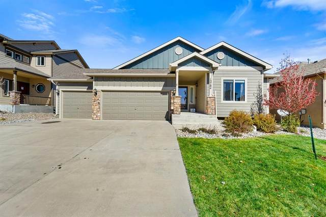 12784 Mt Oxford Place, Peyton, CO 80831 (#5121476) :: The Gold Medal Team with RE/MAX Properties, Inc