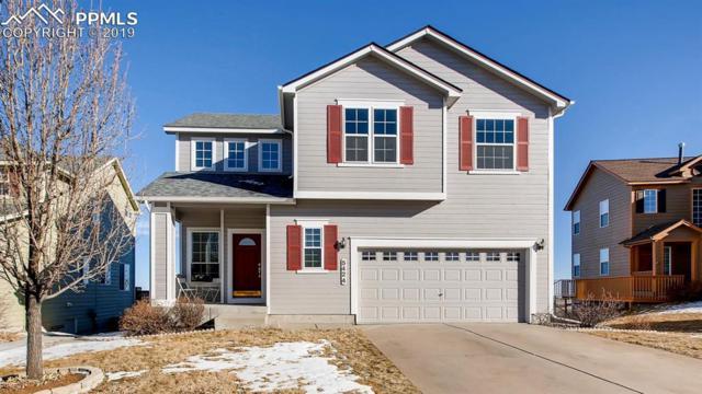 5424 Rose Ridge Lane, Colorado Springs, CO 80917 (#5121653) :: CC Signature Group