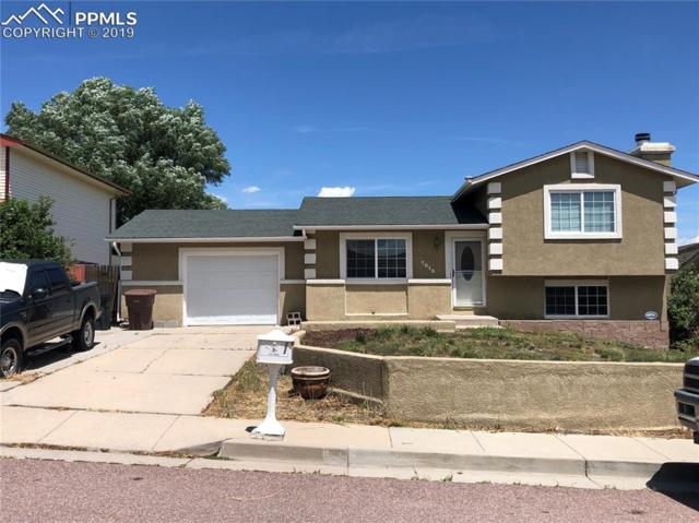 7015 Woody Creek Drive, Colorado Springs, CO 80911 (#5125351) :: Tommy Daly Home Team