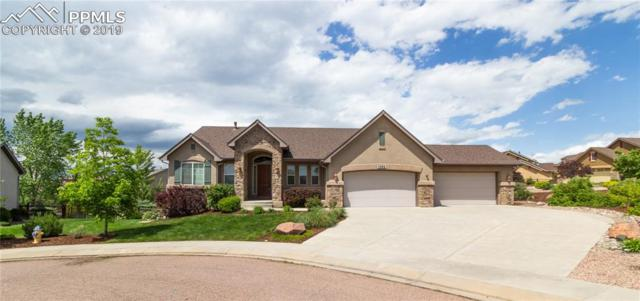 1062 Glengary Place, Colorado Springs, CO 80921 (#5126885) :: Tommy Daly Home Team