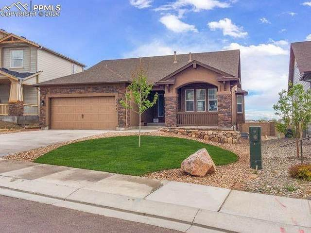 2547 Farrier Court, Colorado Springs, CO 80922 (#5128249) :: Tommy Daly Home Team