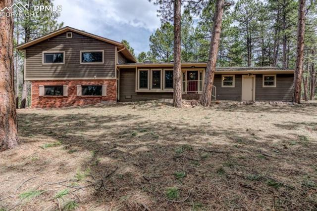 990 Bend In The Trail Road, Monument, CO 80132 (#5141702) :: Tommy Daly Home Team