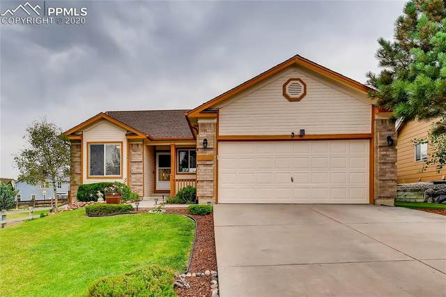 18 Pistol Creek Drive, Monument, CO 80132 (#5141994) :: Tommy Daly Home Team