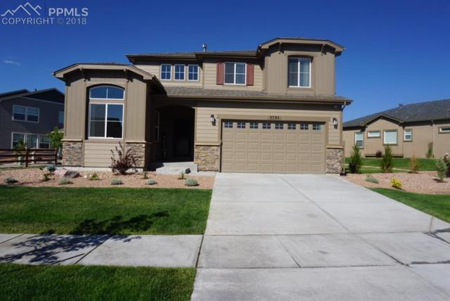 9584 Tutt Boulevard, Colorado Springs, CO 80924 (#5143824) :: The Treasure Davis Team