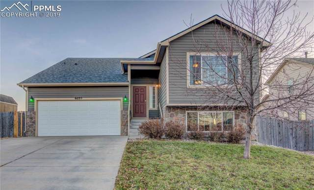6039 Passing Sky Drive, Colorado Springs, CO 80911 (#5144019) :: CC Signature Group