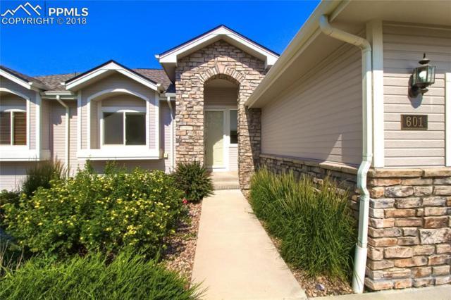 601 Stafford Place, Castle Rock, CO 80104 (#5144341) :: Jason Daniels & Associates at RE/MAX Millennium