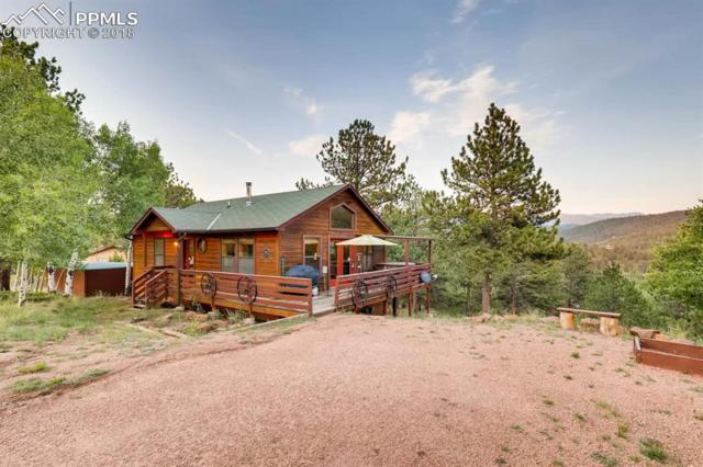 574 May Queen Drive, Cripple Creek, CO 80813 (#5152606) :: CENTURY 21 Curbow Realty