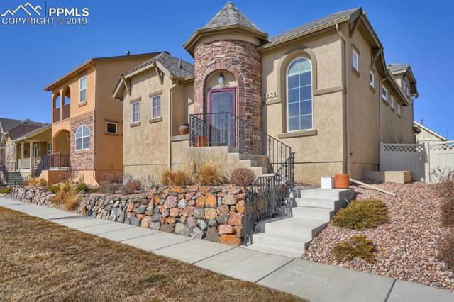 5538 Blue Moon Drive, Colorado Springs, CO 80924 (#5153555) :: Tommy Daly Home Team