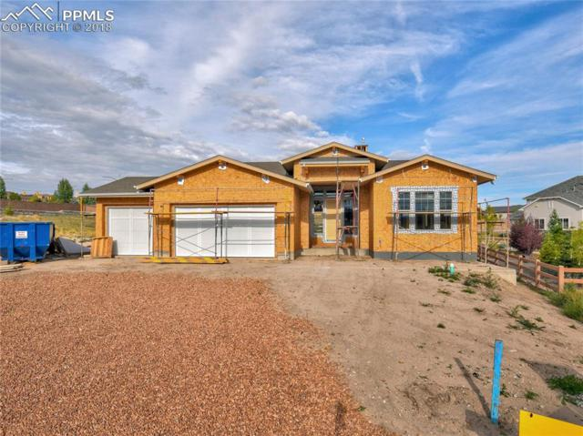 1746 Turnbull Drive, Colorado Springs, CO 80921 (#5155075) :: The Daniels Team