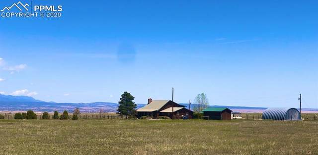 8422 County Road 19, Wetmore, CO 81253 (#5155134) :: Tommy Daly Home Team