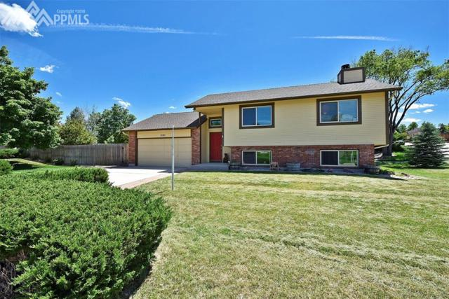 3105 Mirage Drive, Colorado Springs, CO 80920 (#5157038) :: Colorado Home Finder Realty