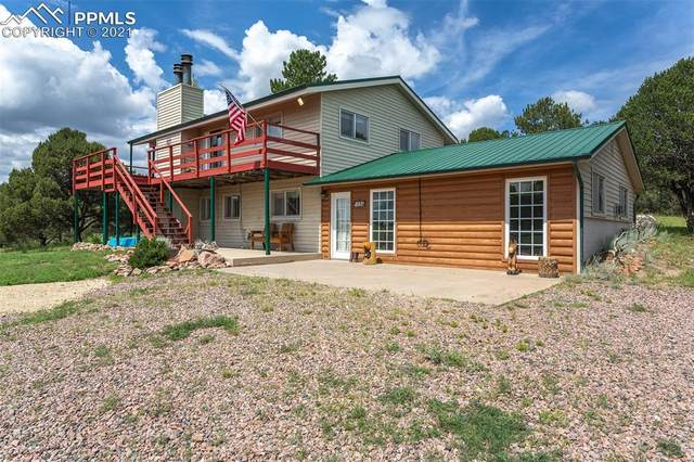 1739 23rd Trail, Cotopaxi, CO 81223 (#5157472) :: The Artisan Group at Keller Williams Premier Realty