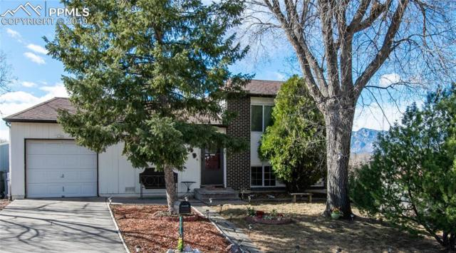 244 Darwin Place, Colorado Springs, CO 80916 (#5158241) :: Tommy Daly Home Team