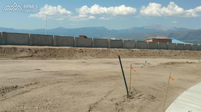 11467 Rill Point, Colorado Springs, CO 80921 (#5163289) :: 8z Real Estate
