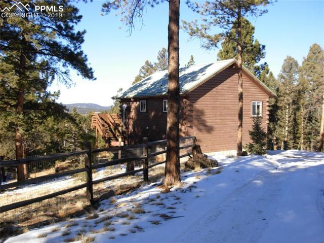 320 Paint Pony Lane, Florissant, CO 80816 (#5166344) :: Tommy Daly Home Team