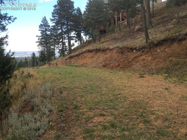 285 Neon Moon View, Manitou Springs, CO 80829 (#5169434) :: Colorado Home Finder Realty