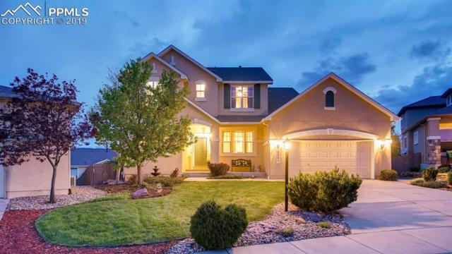 9954 Red Sage Drive, Colorado Springs, CO 80920 (#5170952) :: The Daniels Team