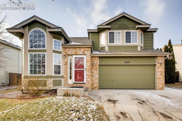 3624 Bareback Drive, Colorado Springs, CO 80922 (#5171071) :: Venterra Real Estate LLC
