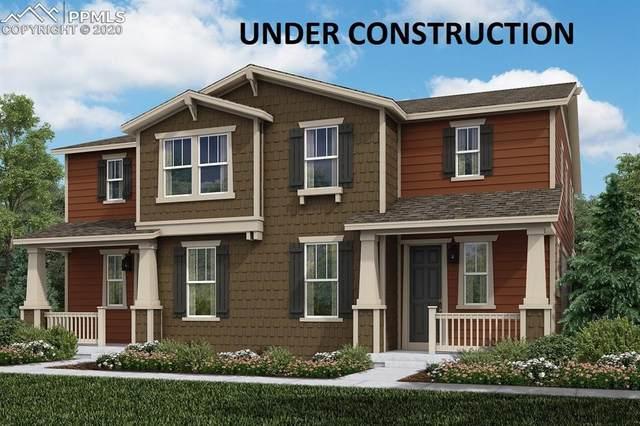 2844 Low Meadow Boulevard, Castle Rock, CO 80109 (#5172110) :: 8z Real Estate
