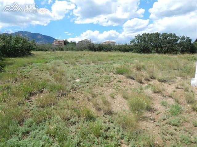 6519 Farthing Drive, Colorado Springs, CO 80906 (#5172278) :: 8z Real Estate