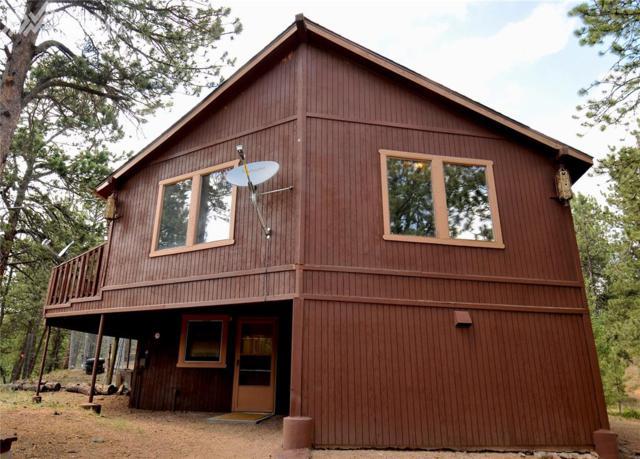 117 Rabbil Creek Trail, Florissant, CO 80816 (#5173048) :: The Treasure Davis Team