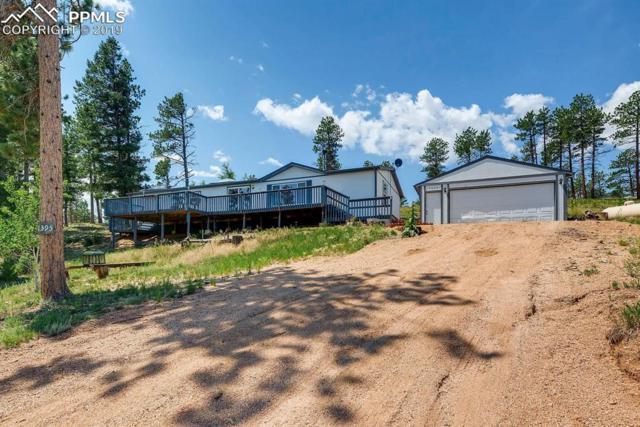 1395 Appleby Drive, Woodland Park, CO 80135 (#5174852) :: Tommy Daly Home Team