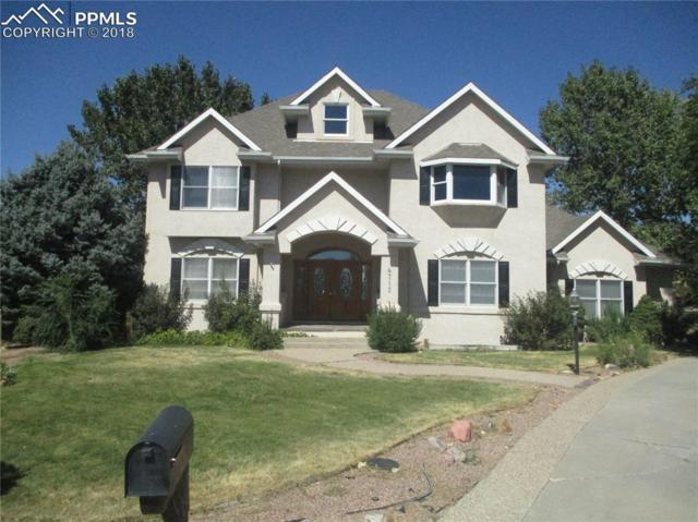 4715 Scarlet Sage Drive, Pueblo, CO 81001 (#5180112) :: Jason Daniels & Associates at RE/MAX Millennium