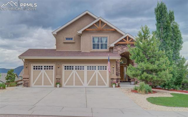 654 Woodmoor Acres Drive, Monument, CO 80132 (#5180980) :: The Daniels Team