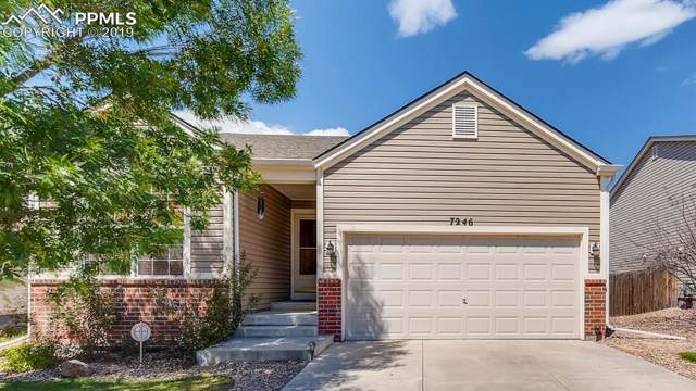 7246 Brush Hollow Drive, Fountain, CO 80817 (#5187718) :: Tommy Daly Home Team