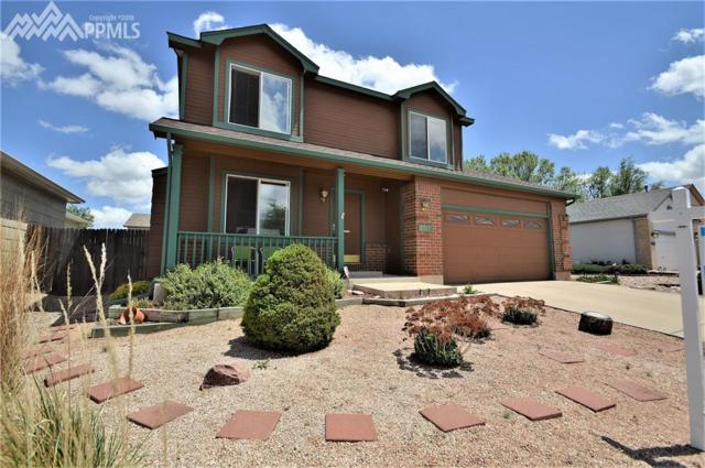 8317 Dassel Drive, Fountain, CO 80817 (#5195693) :: 8z Real Estate