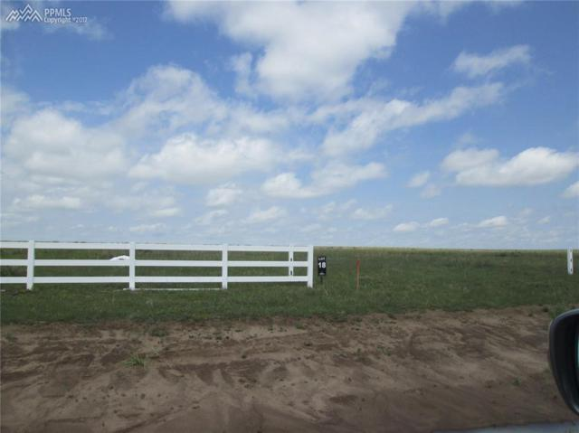 19270 Good Life View, Calhan, CO 80808 (#5197474) :: 8z Real Estate