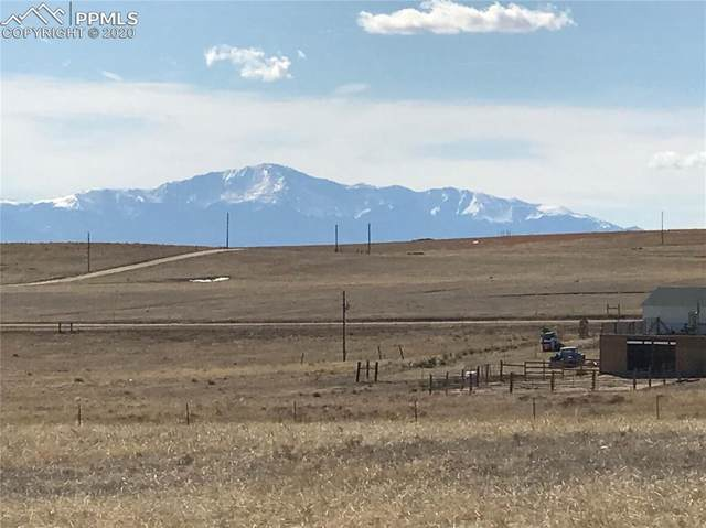 003 N Ellicott Highway, Calhan, CO 80808 (#5197550) :: Action Team Realty