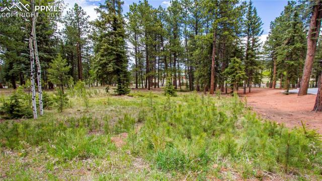 620 Chipmunk Drive, Woodland Park, CO 80863 (#5199974) :: Action Team Realty