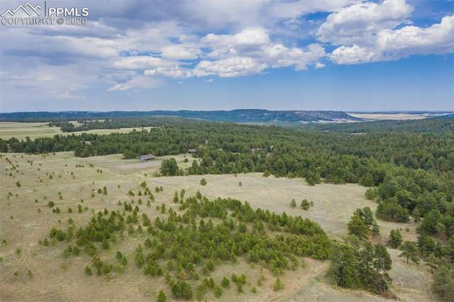 00 Saddle Blanket Lane, Peyton, CO 80831 (#5201033) :: The Kibler Group