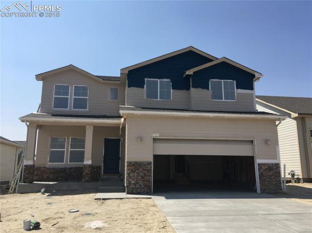 7472 Alpine Daisy Drive, Colorado Springs, CO 80925 (#5203335) :: Harling Real Estate