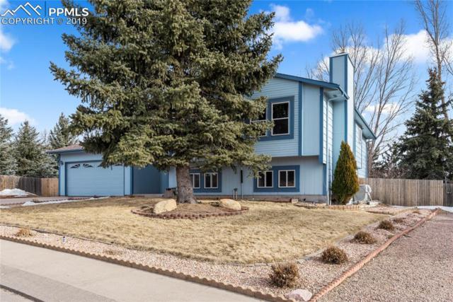 3015 Clipper Drive, Colorado Springs, CO 80920 (#5205099) :: 8z Real Estate