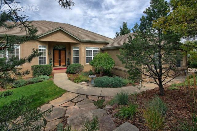 4655 Stone Manor Heights, Colorado Springs, CO 80906 (#5206338) :: 8z Real Estate
