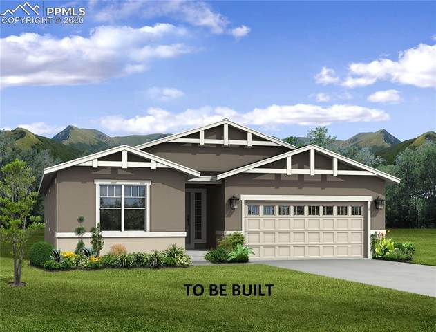 6415 Wolf Gulch Drive, Colorado Springs, CO 80924 (#5216836) :: CC Signature Group